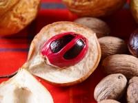 мускатный орех и цвет